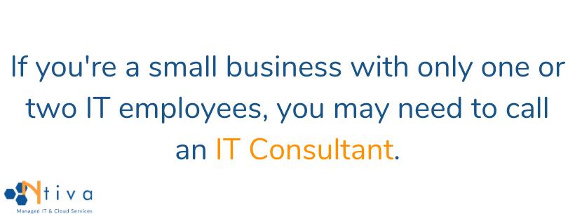 IT consultant quote