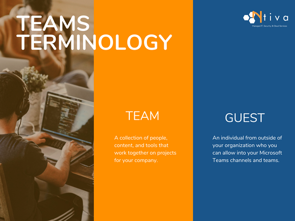 Microsoft Teams Guest and Teams Comparison